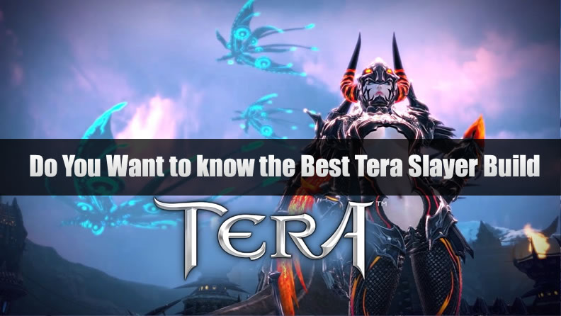 Tera Slayer Build